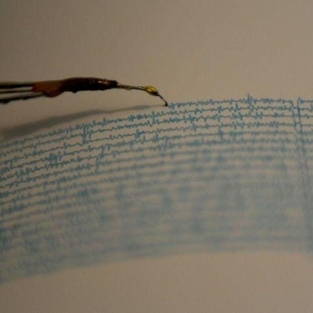 Gempa M 5,1 Terjadi di Maluku, Tak Berpotensi Tsunami