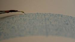Gempa M 4,7 Terjadi di Bengkulu Selatan Terasa hingga Liwa