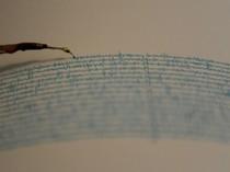 Gempa M 4,9 Terjadi di Sumba Barat Daya