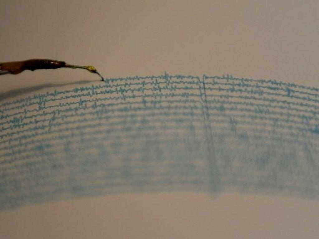 Gempa M 3,9 Terjadi di Pulau Panjang NTB