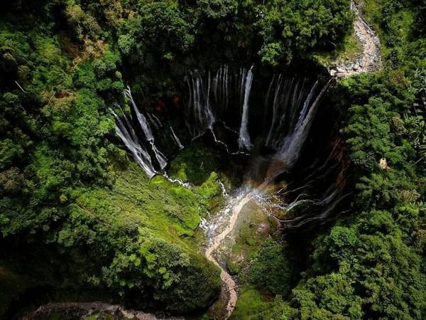 Disebut-sebut Tumpak Sewu adalah air terjun terindah di Pulau Jawa. (A Endin Yoga Pradana/dTraveler)