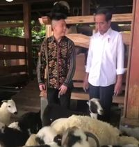 Momen Rich Brian Diperlihatkan Kambing dan Domba Milik Jokowi