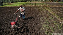 Genjot Kemampuan SDM, Kementan Jalankan Standardisasi Profesi Petani