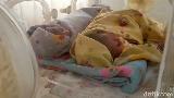 Kisah Ibu Sumarni di Sidrap yang Lahirkan 3 Bayi Kembar