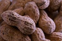 Siap-siap! 10 Makanan Ini Mungkin Punah dalam Waktu Dekat