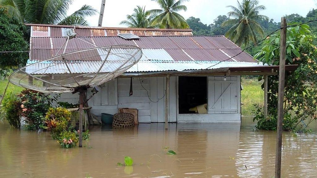 Banjir Rendam 184 Rumah di Halmahera Tengah