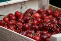10 Makanan Mematikan Ini Perlu Anda Waspadai Saat Mengonsumsinya