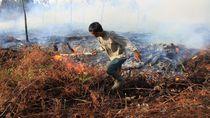 Amien soal Jokowi Kalah di MA: Siapa yang Bisiki? Kok Ngomongnya Bener
