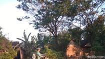 Di Bojonegoro, Petani Pakai Elpiji 3 Kg untuk Bahan Bakar Pompa Air