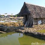 Petani Garam di Sulsel Setop Produksi Gara-gara Harga Anjlok