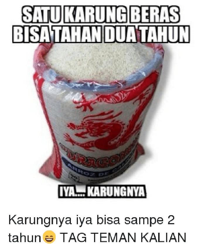 Siapa yang suka menyimpan stok beras di rumah? Nah ini ada info penting kalau satu karung beras bisa tahan dua tahun. Eits tapi karungnya saja ya. Foto: istimewa
