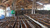 Musim Kemarau Telah Tiba, Petani Garam di Grobogan Panen Raya