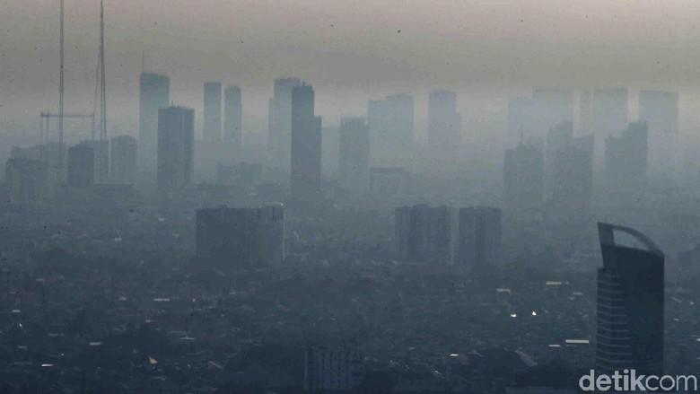 Tangkal Polusi Udara, Pemprov DKI akan Bagikan Lidah Mertua Gratis