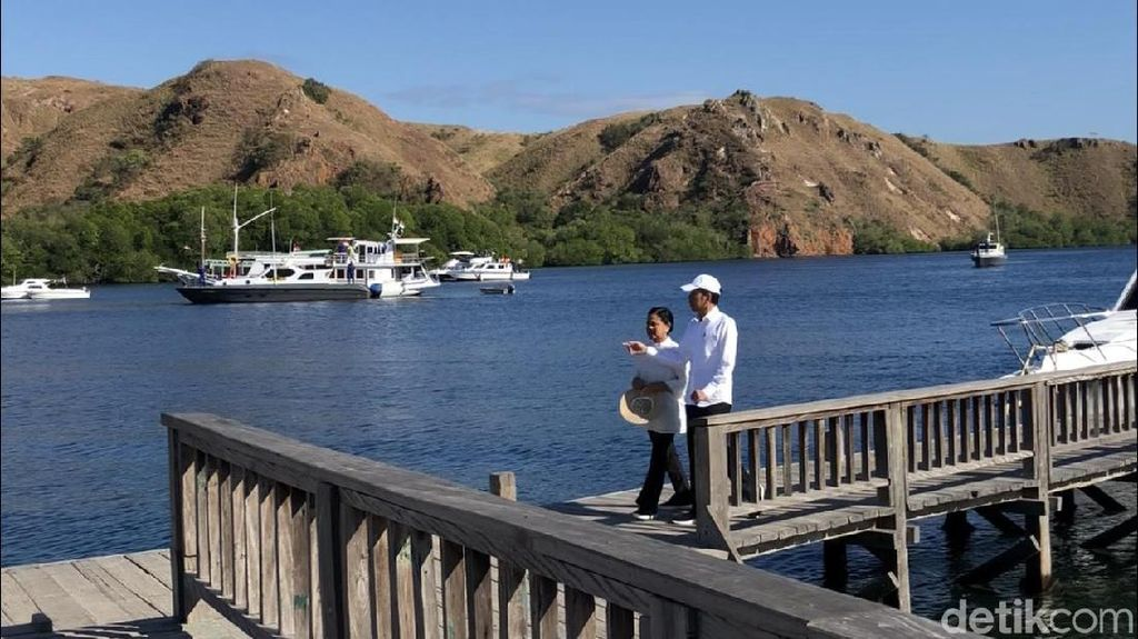 Hari Kedua di NTT, Jokowi Lihat Komodo di Pulau Rinca