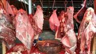 Mencukupkan Konsumsi Daging
