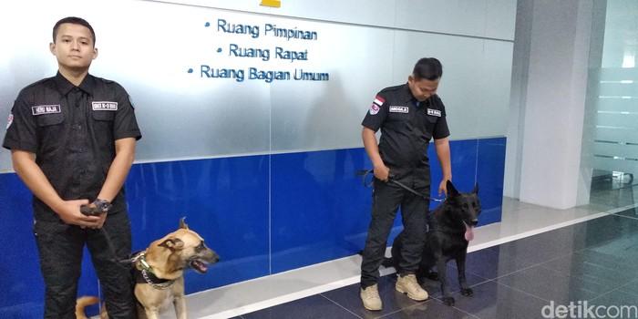 Axel dan Barack, 2 anjing pelacak milik Tim K9 BNN Jabar. (Foto: Dony Indra Ramadhan/detikcom)