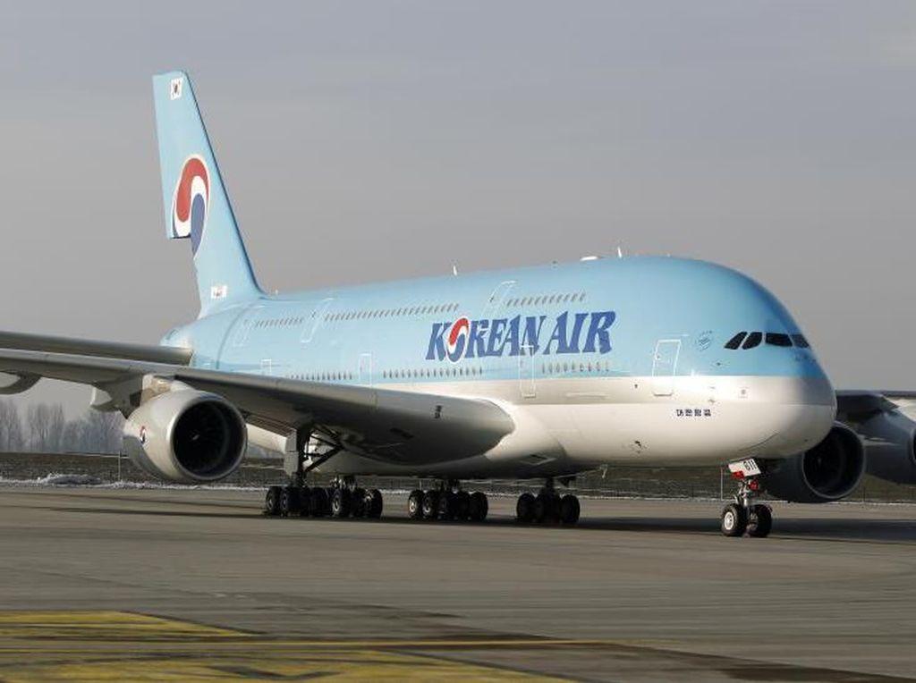 Ilustrasi maskapai Eastar Jet (Eastar Jet/Facebook)