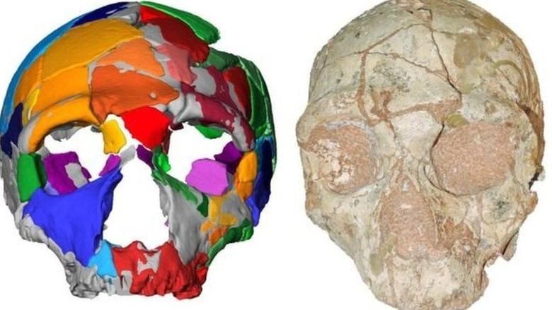 Homo Sapiens Paling Awal Berusia 210 Ribu Tahun Ditemukan di Luar Afrika