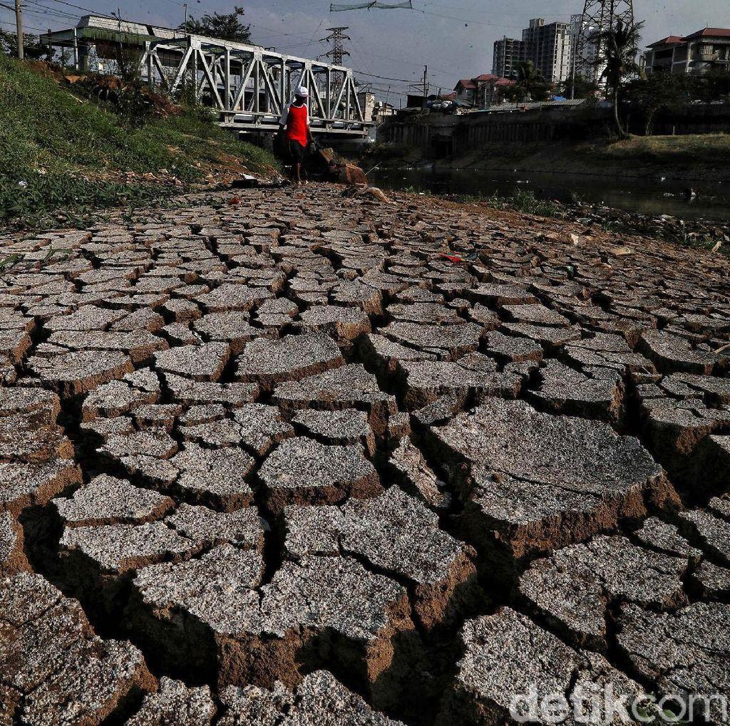 BMKG: Kekeringan Terpanjang di Sumba Timur, 126 Hari Tanpa Hujan