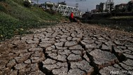 BMKG Prediksi Puncak Kemarau di Jakarta Utara Terjadi pada Agustus