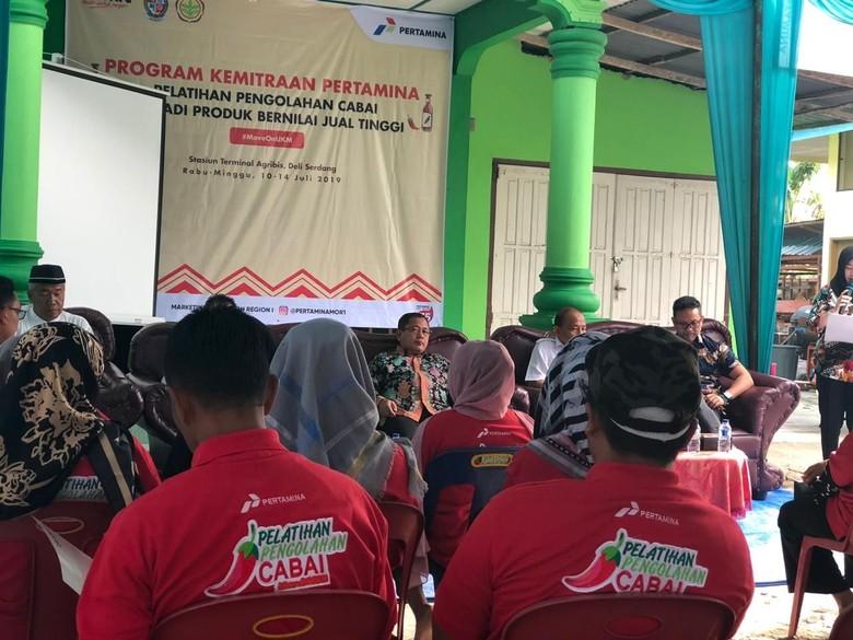 Harga Fluktuatif, Petani di Deli Serdang Diajarkan Olah Cabai