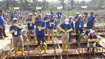 Cegah Abrasi, 10 Ribu Bibit Bakau Ditanam di Pantai Indah Kapuk