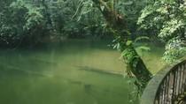 Turis Belanda Tewas Akibat Banjir Bandang di Gua Populer Malaysia