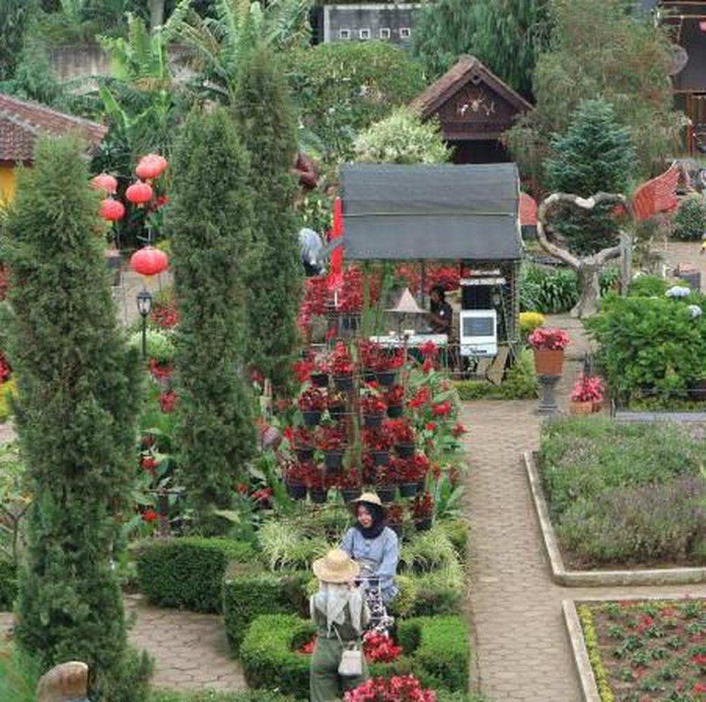 Fakta-fakta Suhu Bandung yang Dingin