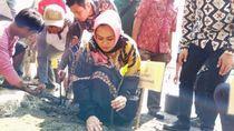 Pertamina Hulu Energi dan Pemkab Karawang Tanam 40.000 Mangrove