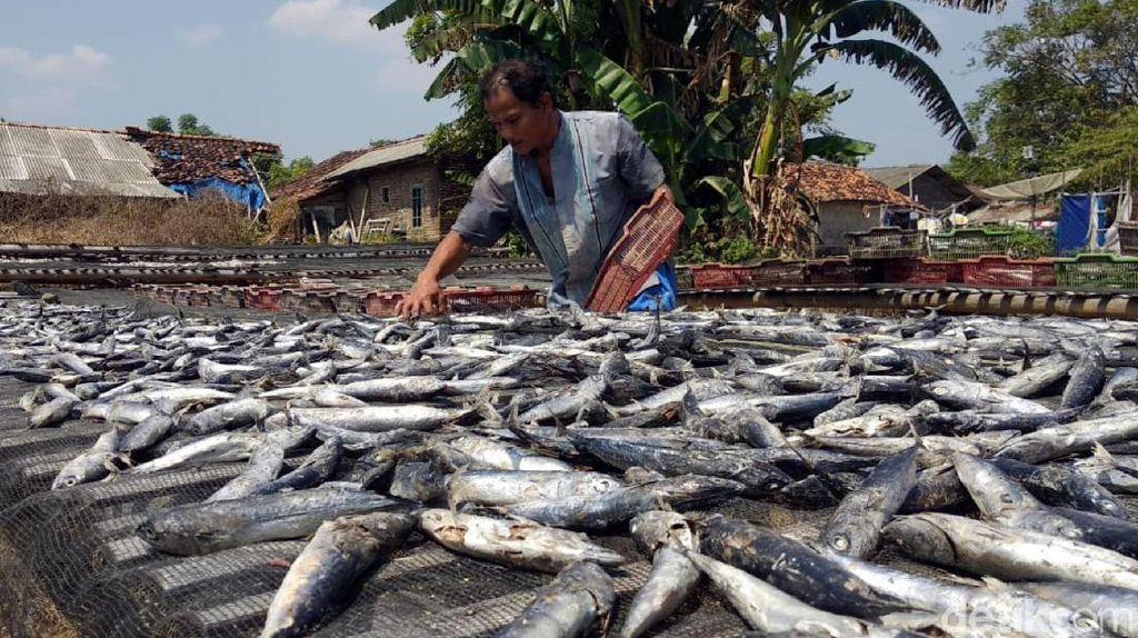 Sarapan Ikan Asin Bisa Menyebabkan Hipertiroid, Benar Nggak Sih?