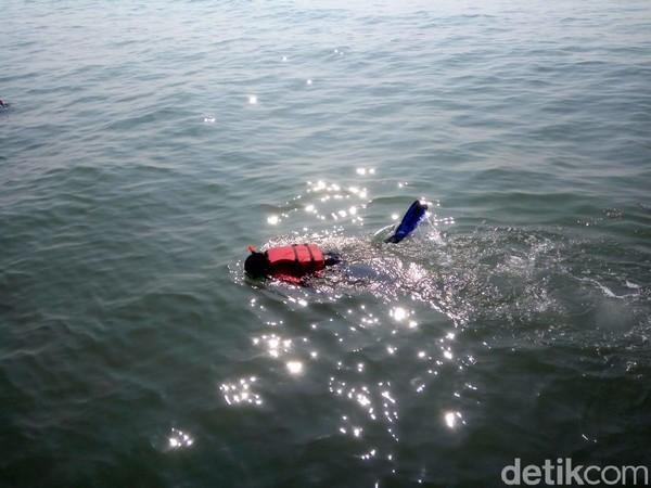 Para pelajar ini menemukan lima gugus terumbu atau gosong berpasir yang menjadi habitat koral atau karang. Lokasinya, 5 kilometer dari Pantai Cibendo. (Luthfiana/detikcom)