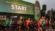 Ribuan Pelari Adu Cepat di MILO Jakarta International 10K