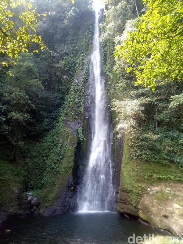 Air Terjun Sori Panca memiliki tingginya mencapi 70-80 meter. Jika menggunakan sepeda motor harus menempuh jarak hingga 3 jam melewati hutan rimbun yang masih alami (Faruk Nickyrawi/detikcom)