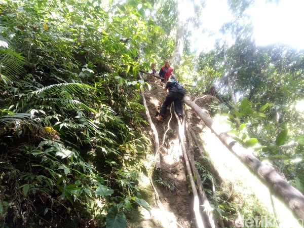 Kamu harus menuruni jurang yang cukup terjal dengan ketinggian mencapi 10 meter. Pegiat wisata setempat menamai jurang tersebut adalah Jurang Lebah (Faruk Nickyrawi/detikcom)