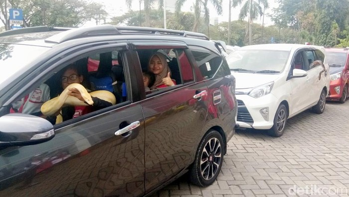 Touring Mobil Bawa Ular Peliharaan, Bagaimana Sensasinya?