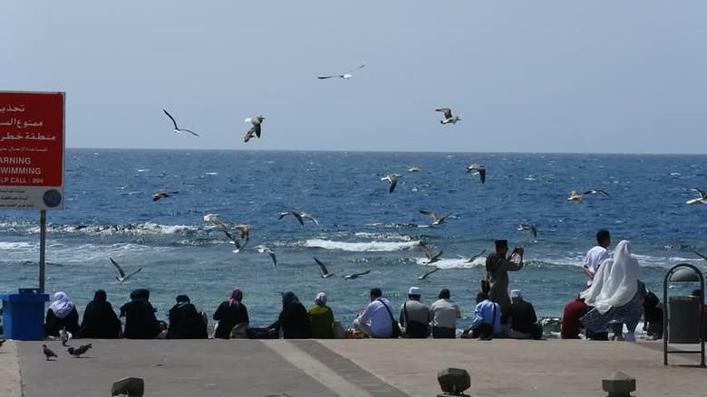 Pantai di Jeddah.