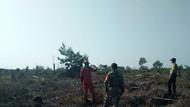 Cegah Karhutla, TNI Patroli di Kawasan Taman Nasional Tesso Nilo Riau