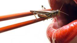 Peneliti Sebut Konsumsi Beragam Serangga Bisa Cegah Penyakit Kanker
