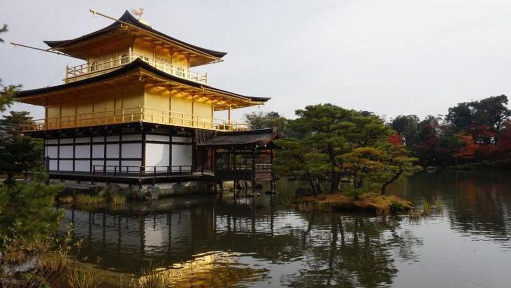 Kuil Berlapis Emas di Jepang, Cantik Banget