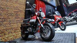 Honda Mulai Jual Si Mungil Monkey di RI, Harganya Rp 65 Juta
