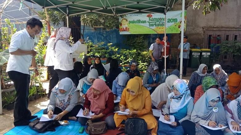 Kembangkan Urban Farming, Pokbun Binaan Pertamina Jadi Percontohan
