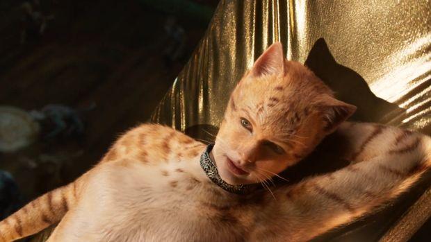 Cats: Warisan yang Buruk dari 2019