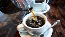 Daripada Milenial Minum Kopi Susu, Menkes: Mending Kopi Temulawak