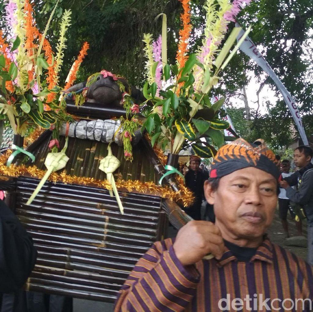 Tradisi Larung Kepala Kerbau di Trenggalek Digelar Tiap Jumat Kliwon