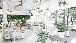 Berkonsep Serba Putih, 5 Kafe Instagenik di Jakarta Ini Bisa Jadi Tempat Nongkrong
