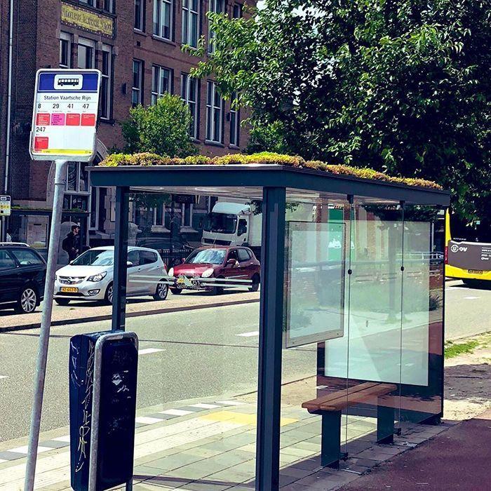 Utrecht merupakan kota keempat terbesar di Belanda yang memiliki 316 halte bus. Dengan waja baru halte bus ini, diharapkan dapat menjadi habitat lebah untuk berkembang biak. Istimewa/Boredpanda.