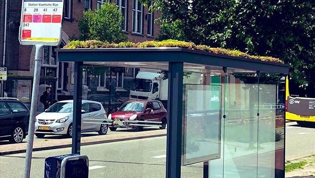 Wow! Atap Halte Bus Ini Disulap Jadi Taman Kecil