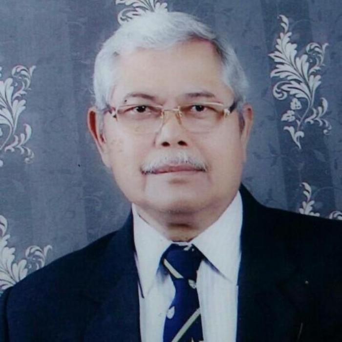 Prof Sudjijono/Foto: Istimewa