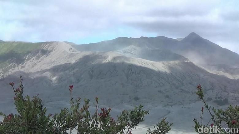 6 Fakta Gunung Bromo yang Alami Erupsi dan Imbauan untuk Wisatawan/Foto: Muhammad Aminudin