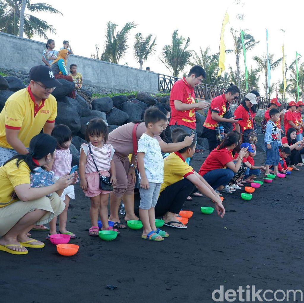 Tradisi Fang Sheng, Ribuan Penyu Dilepasliarkan ke Selat Bali